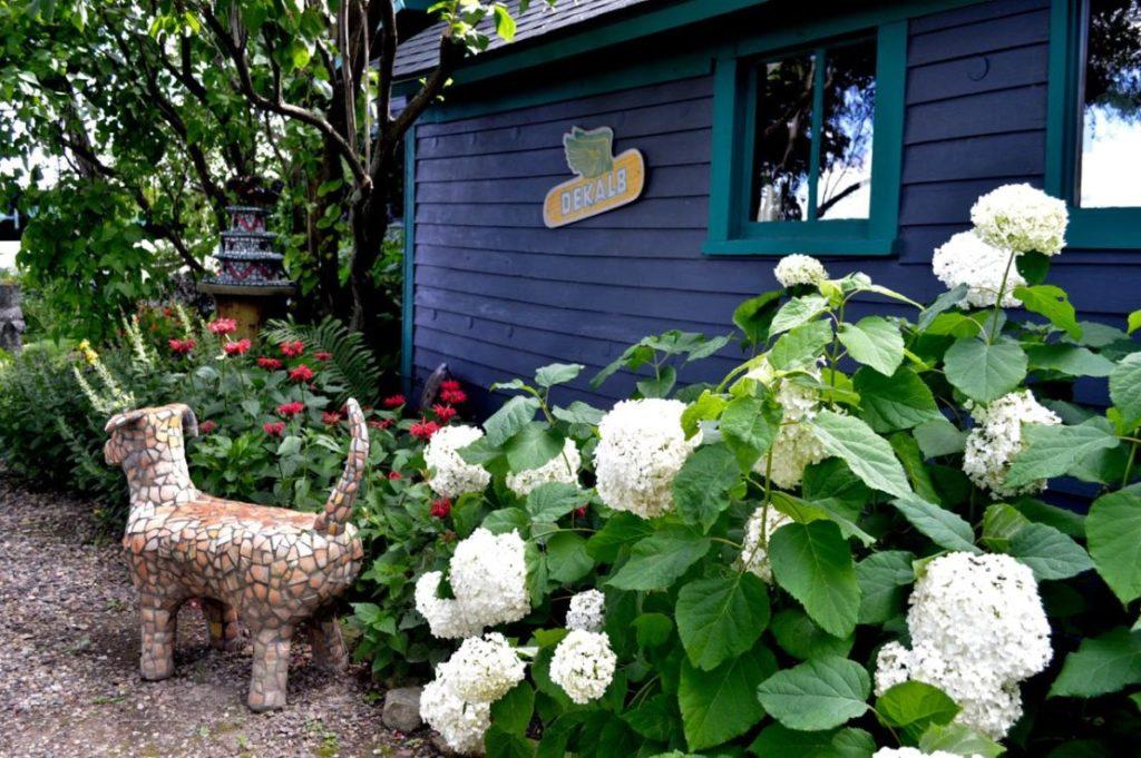 Garden Design Courses Toronto
