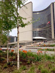TorontoGardens-CityHall-PeaceGarden