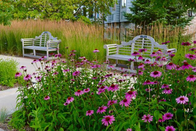 Benches at the Minnesota Landscape Arboretum