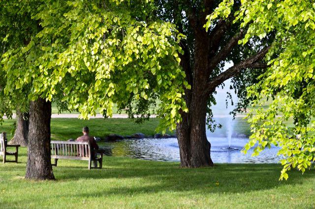 Sitting quietly at the Minnesota Landscape Arboretum