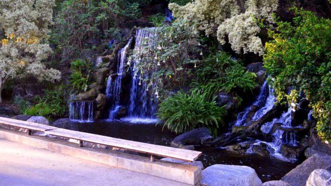 lacountyarboretumbotanicgarden-waterfall1-torontogardens