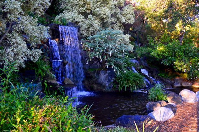 lacountyarboretumbotanicgarden-waterfall5-torontogardens