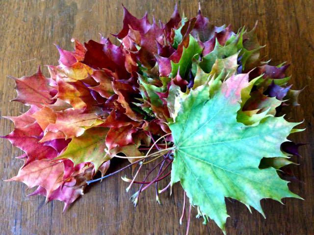 leafwreath1-torontogardens