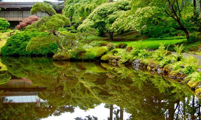 seattlefling-bloedel-japanesegarden-torontogardens