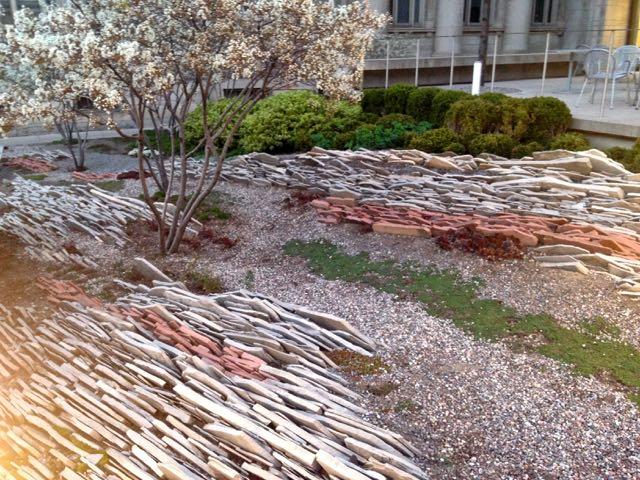 gardinermuseum-crevicegarden-torontogardens