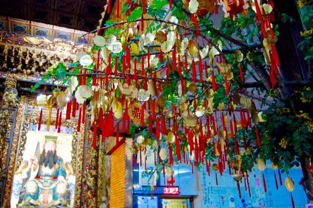 wishtree-taichung-torontogardens