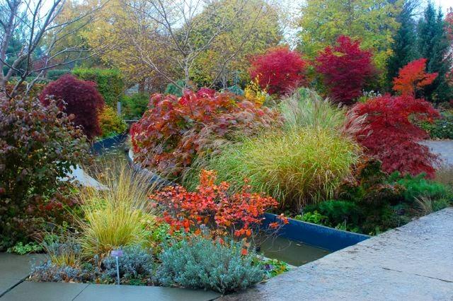 garden colour without flowers toronto gardens