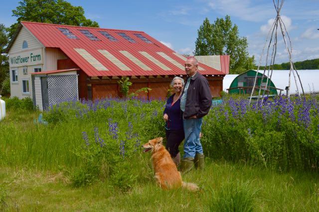 a visit to wild flower farm toronto gardens