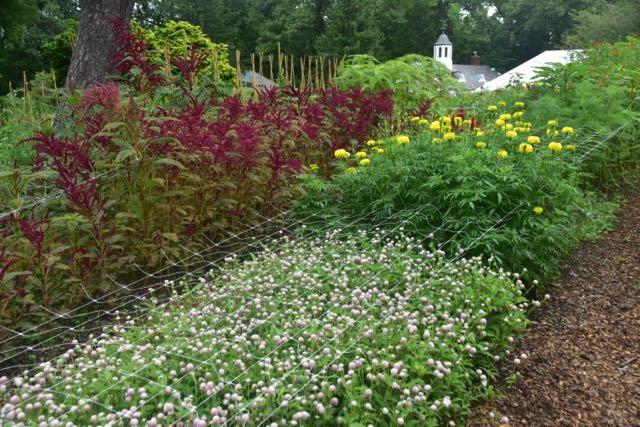 A Cunning Plan For Your Cutting Garden Toronto Gardens Impressive Cutting Garden Design Plans