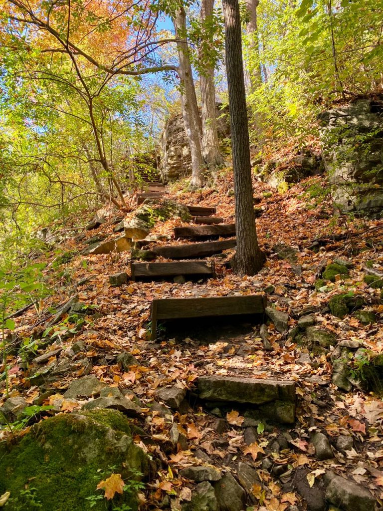 Steps to the top of the Bruce Trail near Dundas, Ontario